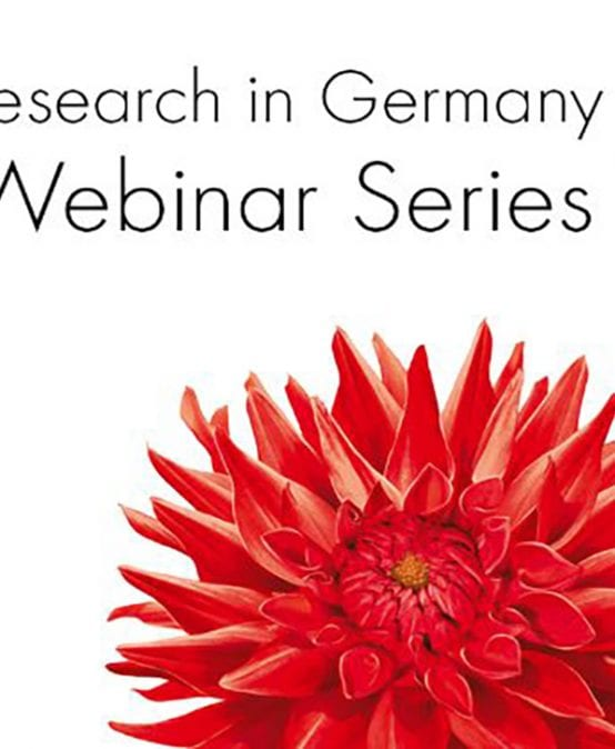 """Research in Germany"" realizará webinars para jóvenes investigadores"