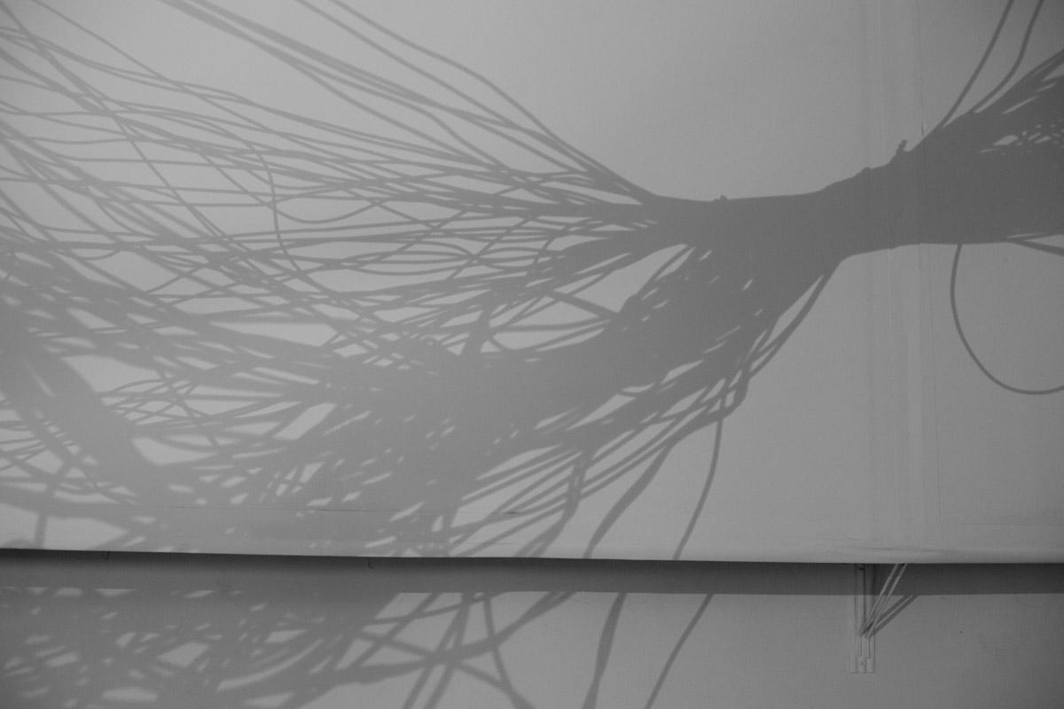 Masa silente – Carolina Lucio